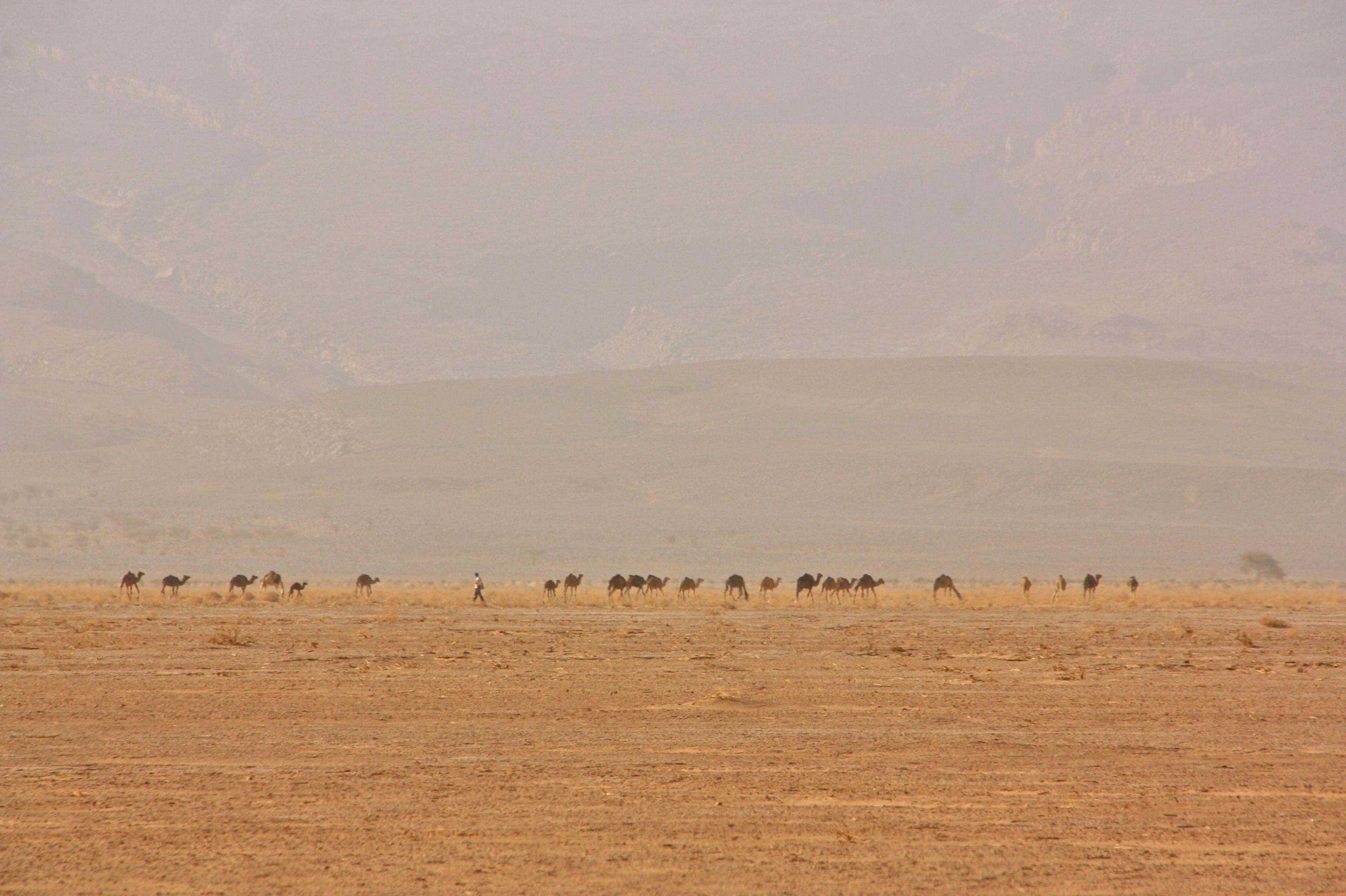 Marokko Sahara elämys