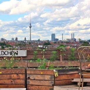 Berliinin kattoterassit